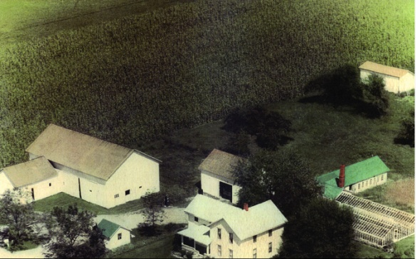 Kreuz farm.jpg